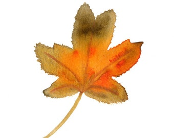 Maple Leaf, Autumn Leaves, Note Cards, Notecards, Blank Cards, Fall Leaves,  Fall, Fall Cards, Autumn, Small Art, Cards, Botanical Art, Leaf