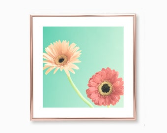 Extra large wall art canvas art, canvas wall art, spring decor, framed wall art, flower photography, blush pink wall art, mint, coral, pink