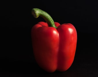 Red Pepper | Photo | Wall Art | Still Life | Digital Download