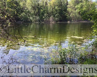 Digital Download, Printable, Lake with Lily Pads, 100% original, Landscape Photography