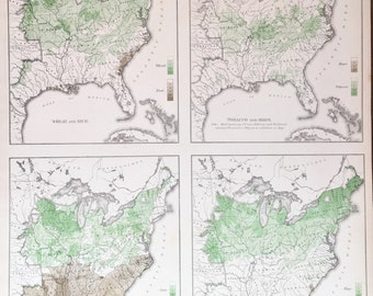 1874 Statistical Map of Crops and rhe tyoes of Crops grown  Hops wheat Sugar tobacco United States