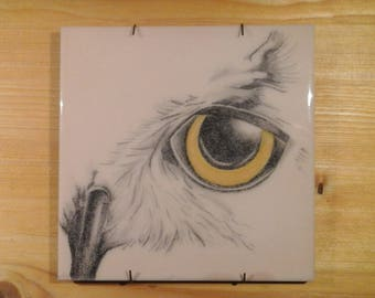Owl Handpainted tile