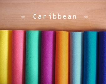 Caribbean -Irisfelt Collection- 8 pieces 15 x20cm