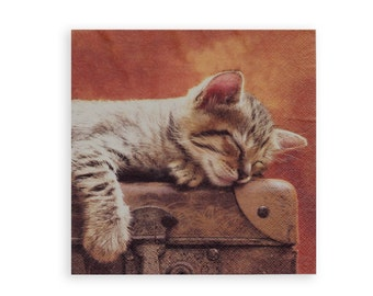 Kitten paper napkin for mixed media, collage, scrapbooking decoupage x 1. Sleeping kitten. No 1155
