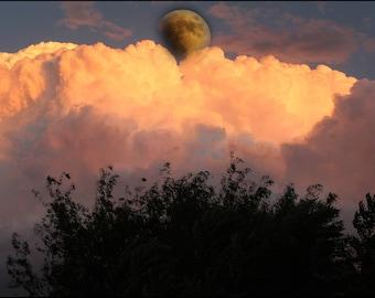 harvest moon, moon, sky, clouds, beauty