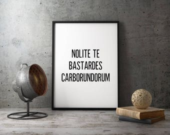 Handmaid's Tale - Nolite Te Bastardes Carborundorum, Don't Let the Bastards Grind You Down, Handmaids Tale Fan Art, Typography Wall Art