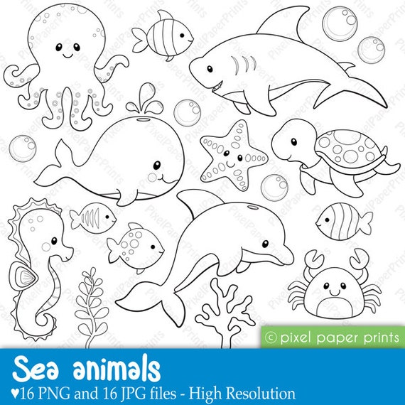 Awesome Cute Ocean Animals Coloring Pages Gallery - Triamterene.us ...