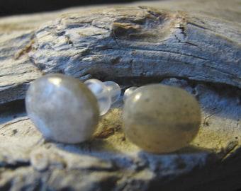 small labradorite oval post earrings