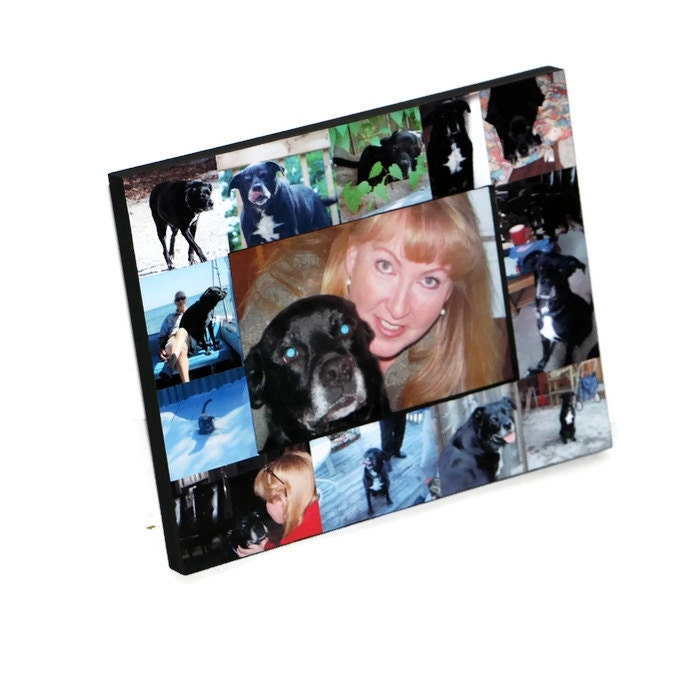 Pet Memorial Collage Pet Frame Personalized Picture In Loving Memory ...