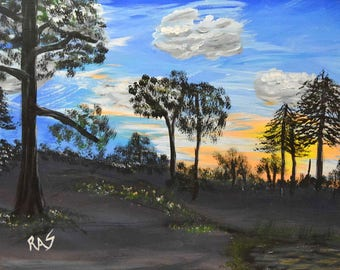 Pines at Dusk