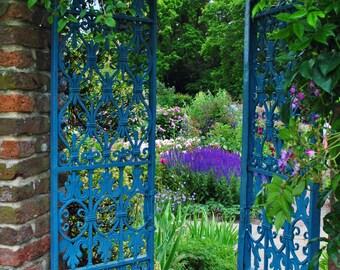 Flower Photography - Garden Photography - Fine Art Photography - Flowers - Nature Photography - England - Wall Art - Castle Gardens - Roses