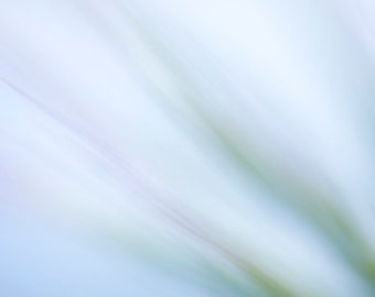 Abstract Nature Photography, Ethereal Art Print, Blurry Wall Decor