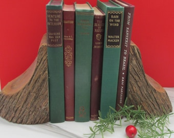 Berries and Fir -Set of Vintage Christmas Colours Decorative Books - Instant Library - Old Book Collection
