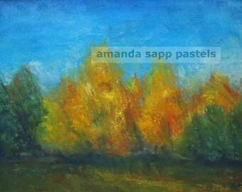 autumn trees original pastel-framed painting-pastel landscape art-pastel painting-amanda sapp-tree painting-fall landscape-golden trees