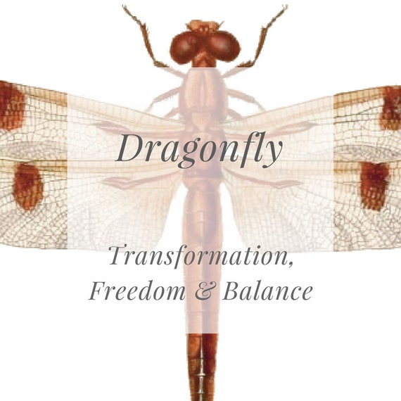 Set Of 2 Temporary Tattoos Red Dragonfly Symbol Of Balance