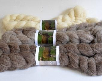 BFL Wool Combed Top Set of Three - Heritage Breed - 300 grams