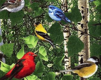 Birds In The Birch Forest Bottom - Timeless Treasures - Fat Quarter