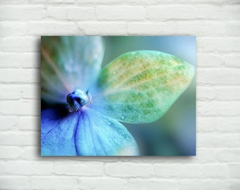 Flower Canvas Print - hydrangea with raindrops, purple flower, 16x20 gallery wrap, 20x30 canvas art large flower wall decor bedroom decor