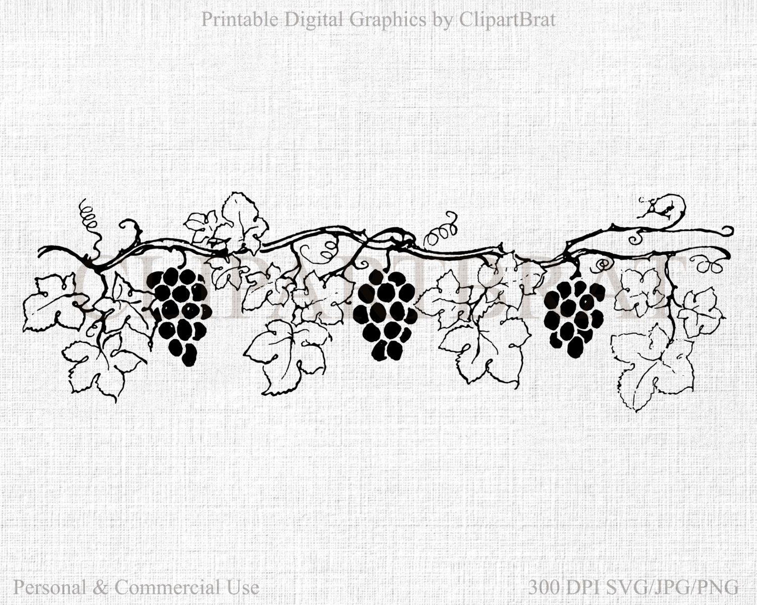 Grape Vine Clipart Commercial Use Clipart Grapes Digital