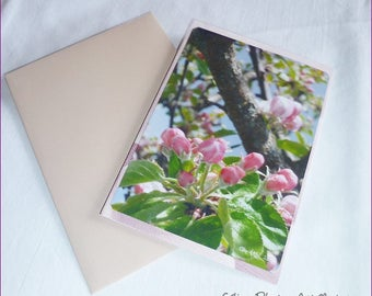 """Apple blossoms ' 10 buds, 5x15cm handmade double card"