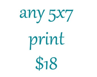 5x7 Photography Print-Fine Art Photography-Custom Size