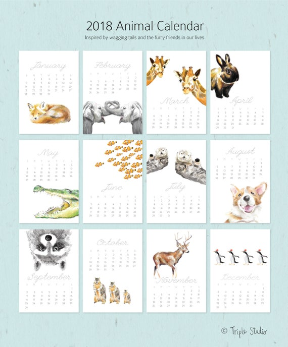 Items similar to ON SALE / 2018 Calendar   Animal Calendar   Desk