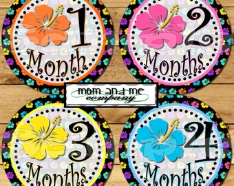 Monthly Baby stickers Baby Girl Shower Gift Infant age Milestone stickers Month to Month Hibiscus Flowers Hawaiian Tropical Aloha decals