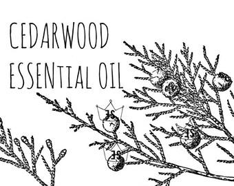 Cedarwood Essential Oil - Pure Cedarwood Essential Oil - Organic Essential Oil - Cedar Wood - Organic Aromatherapy - Cedarwood Oil