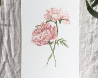 A4 Peonies