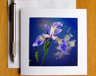 Water Iris Card, Irises, Flower Note Cards, Iris Note Card, Photo Note Card, Blank Cards, Notecards, Stationery, Nature Note Cards, Cards