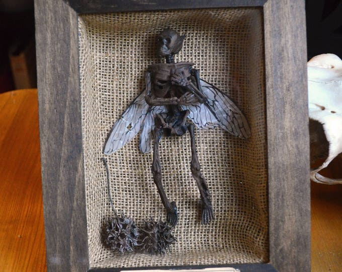 Petrified Fairy Shadow Box Display