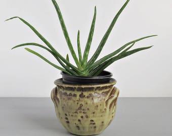 Rustic Pottery Planter Plant Pot - Small Pottery Planter