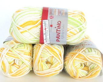Variegated Cotton/Acrylic Yarn - 5 skeins of Pantino by Schoeller Stahl - Citrus