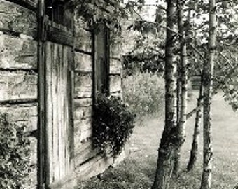 Old Alberta Cabin