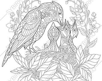 Jay Bird Nest. 2 Coloring Pages for Mother's day greeting cards. Animal coloring book pages for Adults. Instant Download Print