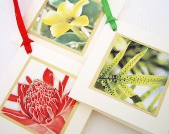 Hawaiian Gift Tags - Lauae fern, Puakenikeni, Torch Ginger