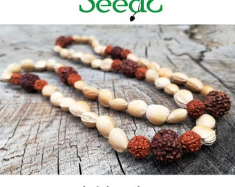 Natural seeds Necklace-Rudraksha, cherry