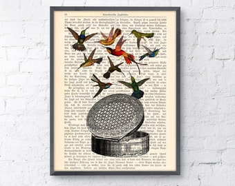 Vintage Book print Victorian pill case wiht hummingbirds Print on Vintage Book page ANI112