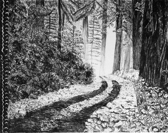 Black and White_Lithography_Woods_Tracks_Nature_