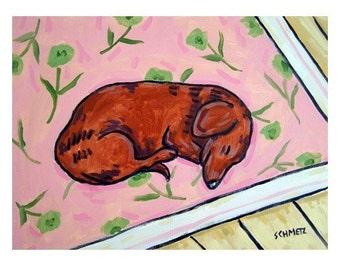 dachshund art - Dachshund Sleeping on a Rug signed dog art print - dachshund gifts