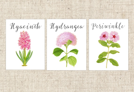 Pink flower table numbers pink table cards pink floral table pink flower table numbers pink table cards pink floral table numbers table tents rose dahlia peony hydrangea daisy carnation lily mightylinksfo Choice Image