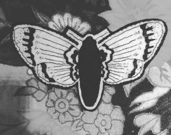 Ms. Moth