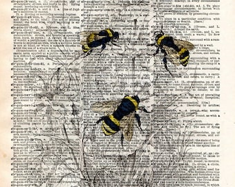 Bumblebee illustration,1800's bee wall art,  dictionary page book art print
