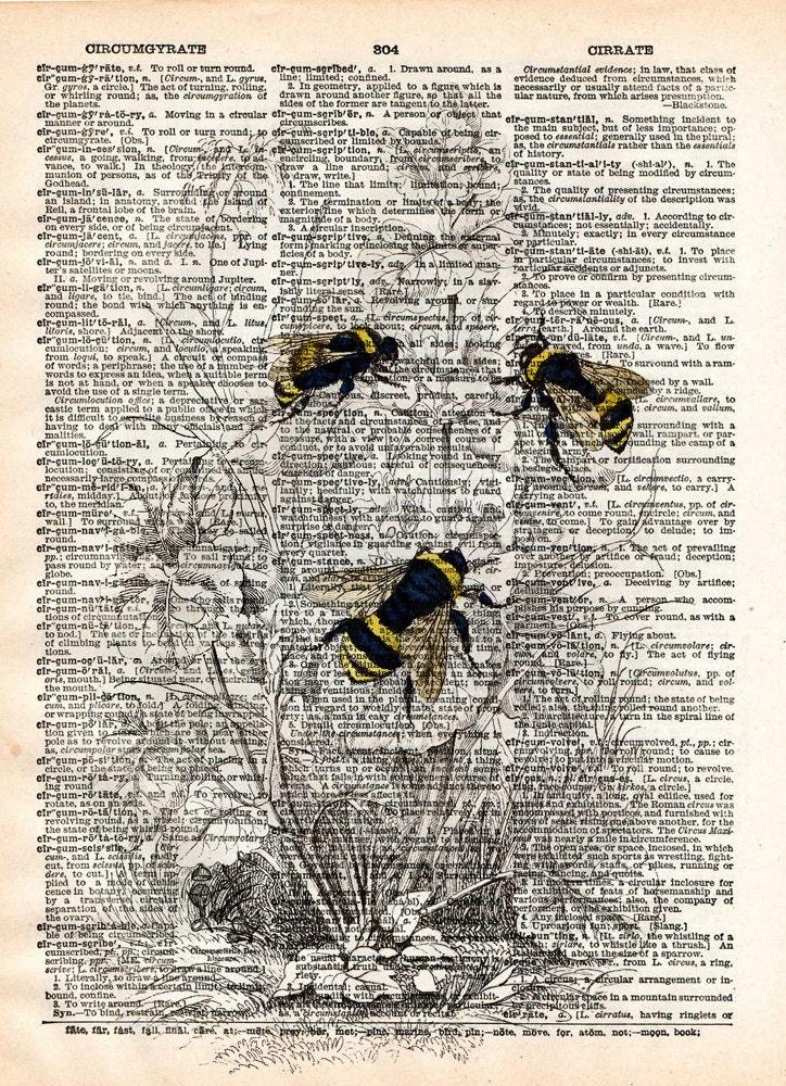 Ilustración de Bumblebee arte del siglo XIX de la pared de la