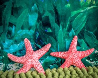 Star Fish (set of 2)