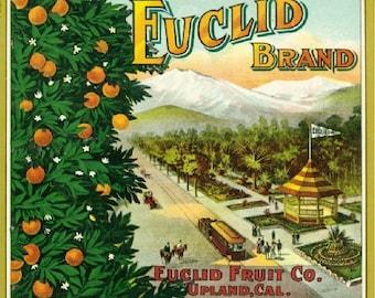 Upland Euclid Orange Citrus Fruit Crate Box Label Art Print