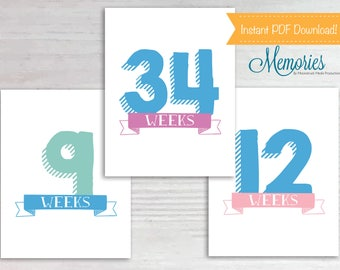 Weekly Pregnancy Chalkboard Sign, Weeks 6-40 plus extras & reveal signs, Week by Week, 8.5in x 11in, Instant Download, Printable