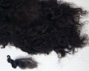Karakul Sheep Wool Locks for Spinning Felting and Doll Hair, Doll Wig, in Natural Shades of Brown with Dark Brown and Black Tips 4 oz.