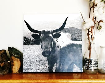 Cow Canvas / Cow Photography / Cow Art / Black and White / Cow Wall Hanging / Country Living / Country Art / Farmhouse Decor / Live This Way
