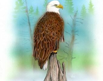 Reelfoot eagle